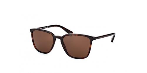 Dolce & Gabbana DG 4301 502/73 havana