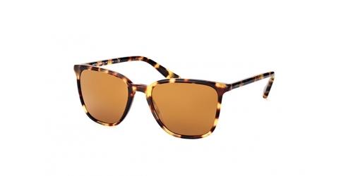 Dolce & Gabbana DG 4301 512/6H tortoise