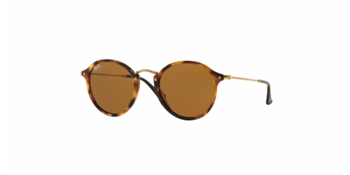 RB2447 RB 2447 1160 Spotted Brown Havana