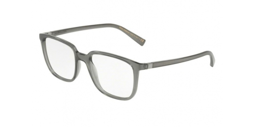 Dolce & Gabbana DG5029 3160 Transparent Grey