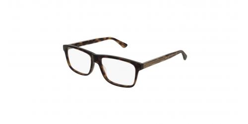 920dd8dbd8 Mens Havana or Other Glasses
